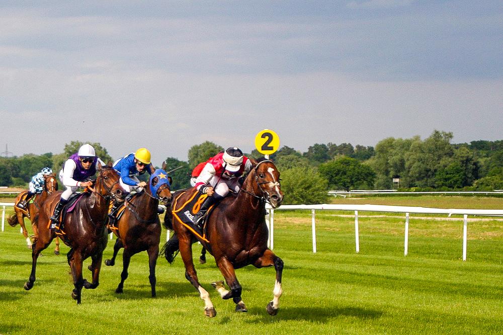 Horse Racing Image by dreamtempfromPixabay