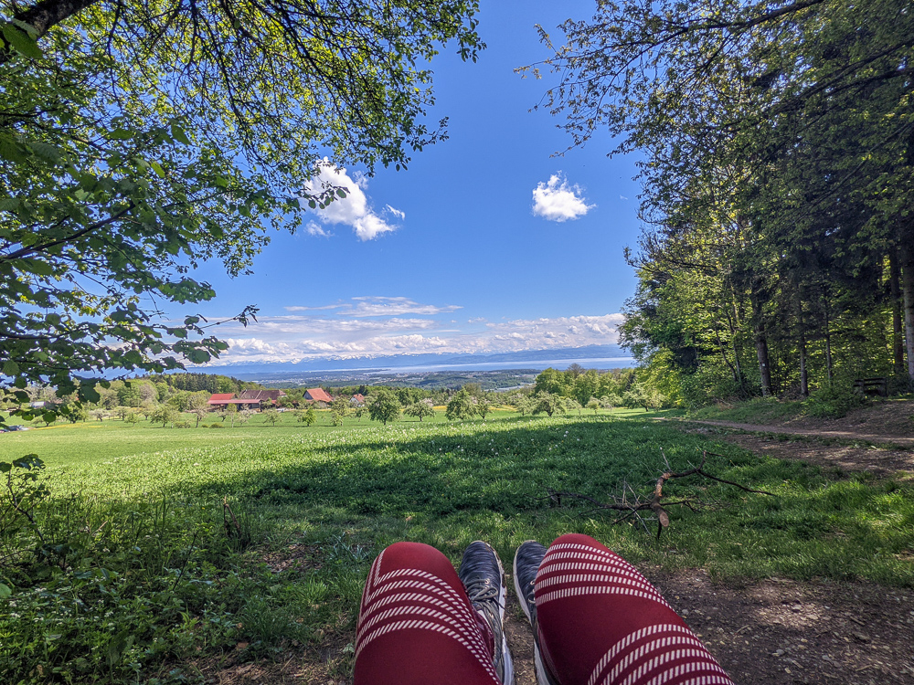 View from Gehrenberg Tower near Markdorf – excursion tip at Lake Constance